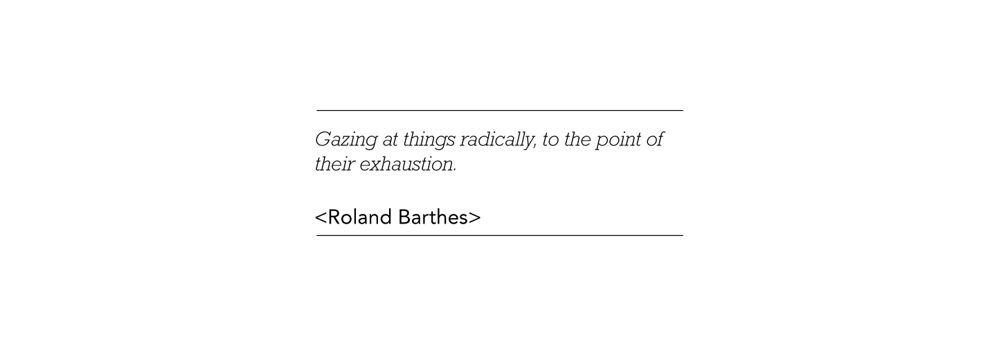Roland Barthes quote